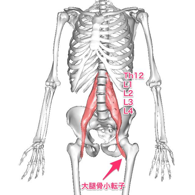 daiyoukin-8